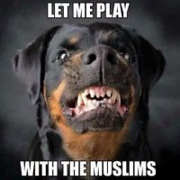 """May Allah curse you, you pig, you dog,"" says Muslim to imam who opposes jihad terror"