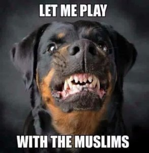 let-me-play-moslims-dog