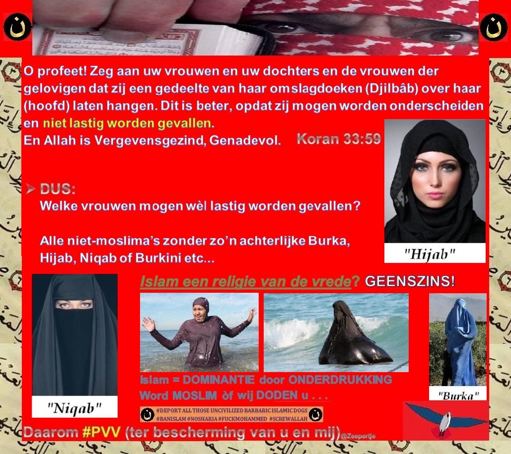 burka-burkini-niqab-jihab-quran-33vers59-lastig-vallen
