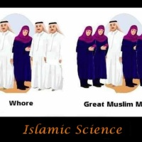 Contribution to 4 scientific areas by islam