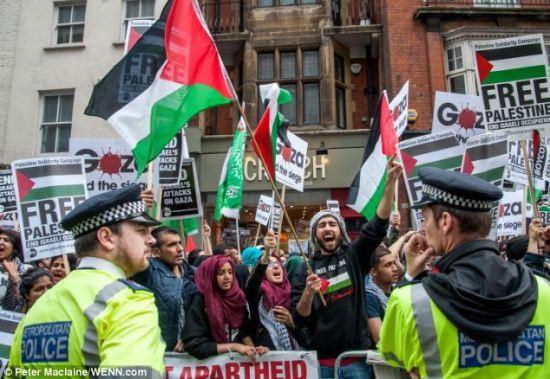 palestine-protest