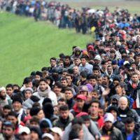 Nederland wordt voller, armer en islamitischer