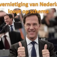 Het nieuwe Nederlandse kabinet is een dief van onze ziel, Verplicht naar Rijksmuseum, Tweede Kamer en volkslied zingen als afleiding voor ontmantelingen