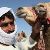 Weten de Zweden wel wat moslim migranten zullen doen met het kamelenpark dat zij speciaal voor hen willen bouwen?