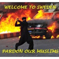 Swedish police was forced to conceal 5,000 Muslim crimes in four months under 'Refugee Code 291'
