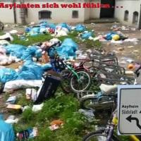 Grüner Irrsinn: Fraktionschefin im EU-Parlament fordert Ansiedlung ganzer syrischer Dörfer in Osteuropa