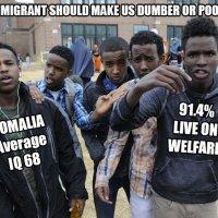 Siegeszug der Dummheit: IQ der westlichen Nationen fiel dramatisch ab, als der Prozentsatz der weißen Menschen schrumpfte