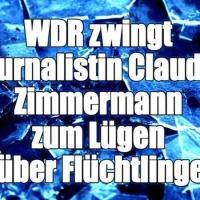 Vrije pers? Journalist die niet positief over migranten schrijft keihard aangepakt