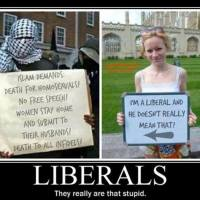 Vids; Liberalism and (Radical) Islam Are Totalitarian Bedfellows