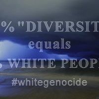 Diversity meaning . . . White genocide
