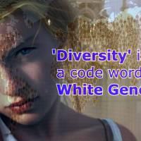 Multiculturalists Working to Undermine Western Civilization